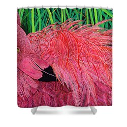 Ruffled Flamingo Shower Curtain