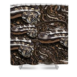 S Is For Snakes Shower Curtain