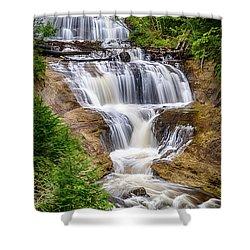 Sable Falls Shower Curtain