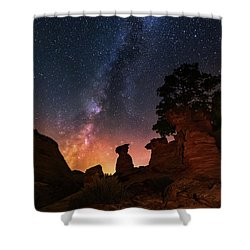 Shower Curtain featuring the photograph Sanctuary by Tassanee Angiolillo