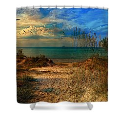 Sand Track To The Ocean At Dusk Shower Curtain