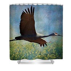 Sandhill Crane Art Shower Curtain