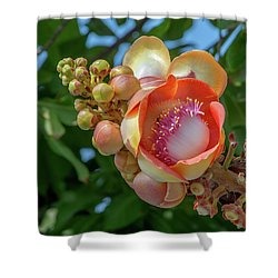 Shower Curtain featuring the photograph Sara Tree Or Cannonball Tree Flower And Buds Dthn0264 by Gerry Gantt