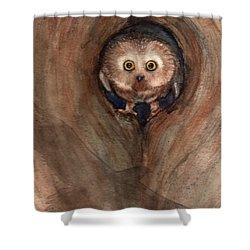 Scardy Owl Shower Curtain