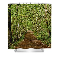 Scotland. Killiecrankie. Path Through The Trees. Shower Curtain