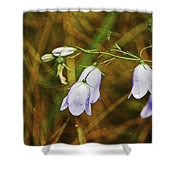 Scotland. Loch Rannoch. Harebells In The Grass. Shower Curtain