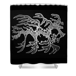 Sea Dragon Black And White Shower Curtain