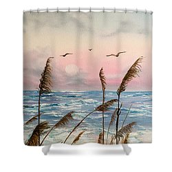 Sea Oats And Seagulls  Shower Curtain