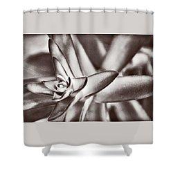 Sensual Succulent II Shower Curtain