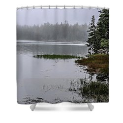 Ship Harbor Nature Trail, Acadia National Park Shower Curtain