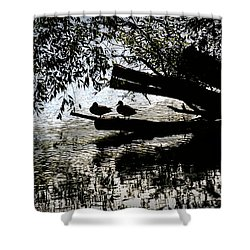 Shower Curtain featuring the photograph Silhouette Ducks #h9 by Leif Sohlman