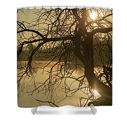 Silhouette Of A Tree By The River At Sunrise Shower Curtain