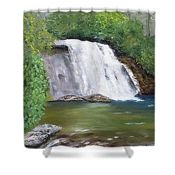 Silver Run Falls Shower Curtain