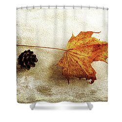 Shower Curtain featuring the photograph Simple And Beautiful by Randi Grace Nilsberg