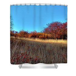 Shower Curtain featuring the photograph Sliver Of Sunlight by David Patterson