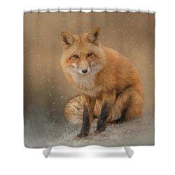 Snow Prince Shower Curtain