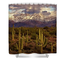 Shower Curtain featuring the photograph Snowy Dreams by Rick Furmanek