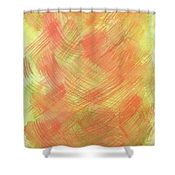 Soft Orange Colors 2 Shower Curtain