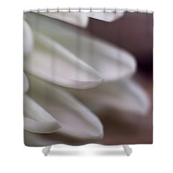 Soft White Petals-1 Shower Curtain