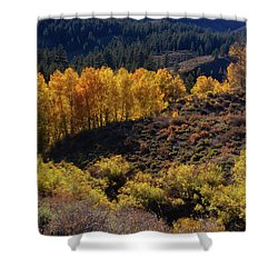 Sonora Pass Shower Curtain