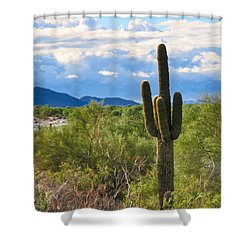 Sonoran Desert Landscape Post-monsoon Shower Curtain