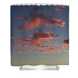 Space Needle And Pink Clouds Shower Curtain