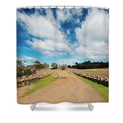 Shower Curtain featuring the photograph Spiky Bridge During The Day by Rob D