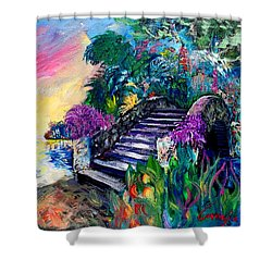 Spirit Bridge Two Shower Curtain