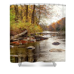Spring Hole #2 Shower Curtain