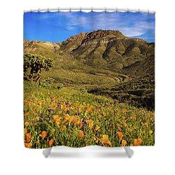 Springtime In The Desert Southwest Shower Curtain