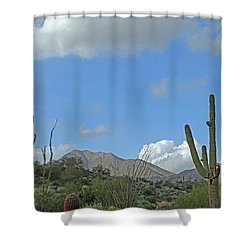 Shower Curtain featuring the photograph Staged Beauty  by Lynda Lehmann