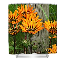 Standing To Attention  Shower Curtain