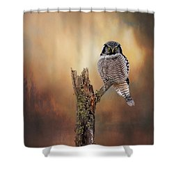 Stare Into My Eyes Shower Curtain