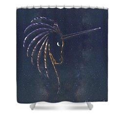 Star Unicorn Shower Curtain
