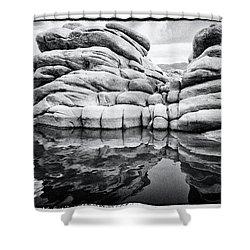 Stoneworks Shower Curtain