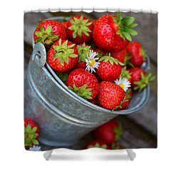 Strawberries And Daisies Shower Curtain