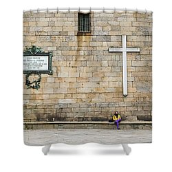 Shower Curtain featuring the photograph Street Color by Alex Lapidus