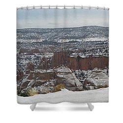 Striped Overview Shower Curtain