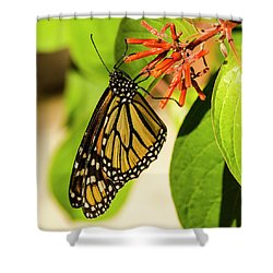 Stunning In Yellow And Orange Shower Curtain