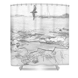 Subantarctic Island Shower Curtain