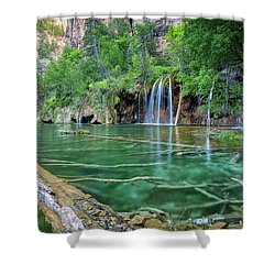 Shower Curtain featuring the pastel Submerged Log, Hanging Lake Colorado by Nathan Bush