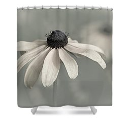 Shower Curtain featuring the photograph Subtle Glimpse by Dale Kincaid