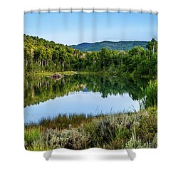 Shower Curtain featuring the photograph Summer Cove At Ivie Pond by TL Mair