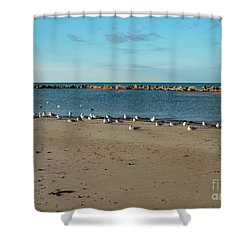 Sun Bathers At Corporation Beach Cape Cod Shower Curtain