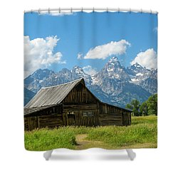 Sunny Day Shower Curtain