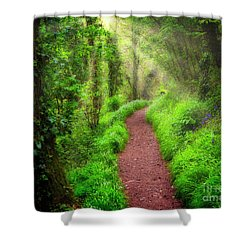 Shower Curtain featuring the photograph Sunrise Avenue by Edmund Nagele
