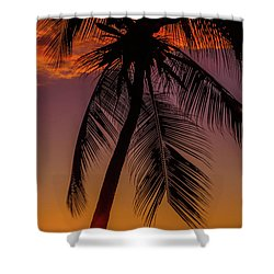 Sunset At The Palm Shower Curtain
