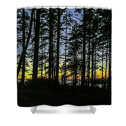 Shower Curtain featuring the photograph Sunset Thru The Trees by Ed Clark