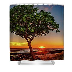 Sunset Tree Shower Curtain