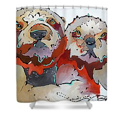 Swaddle Shower Curtain
